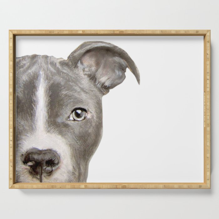 Pit bull with white background Serving Tray
