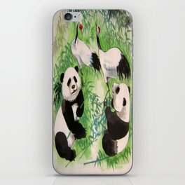 bamboo orchestra iPhone Skin