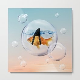 Shark Fin Goldfish in a Bubble Metal Print