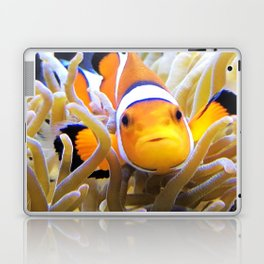 Clownfish In Anemone Laptop & iPad Skin