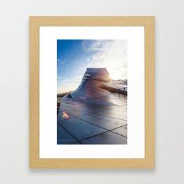 Musé de la Confluence Framed Art Print