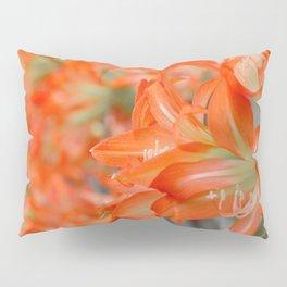 Pattern #8 Pillow Sham