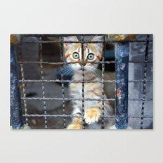 Prisoner Canvas Print