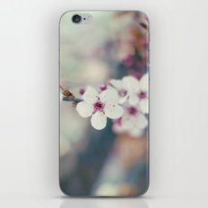Cherry-tree iPhone & iPod Skin