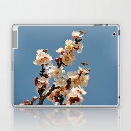 Spring 2013 05 Laptop & iPad Skin