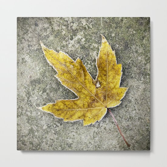 this leaf Metal Print