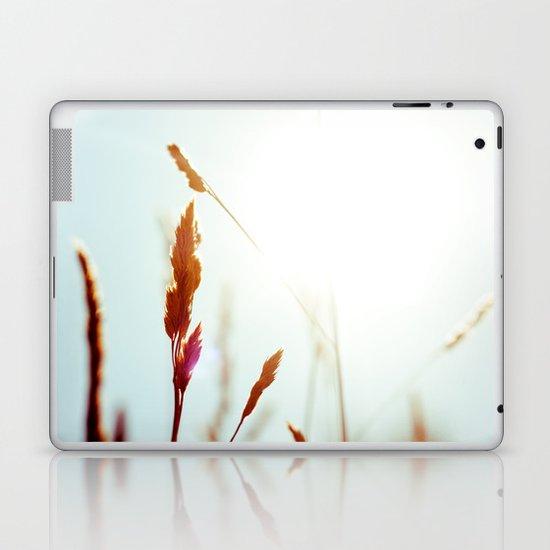 Nature Blue Reeds Laptop & iPad Skin