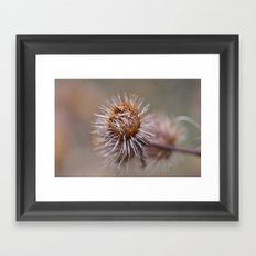 The Thorns Framed Art Print