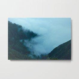 Big Sur, CA. Fog in Trees. Metal Print
