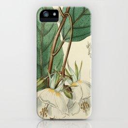 Edwards' Botanical Register iPhone Case