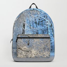 Another winter wonderland Backpack
