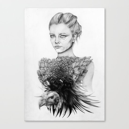 Vulture Canvas Print