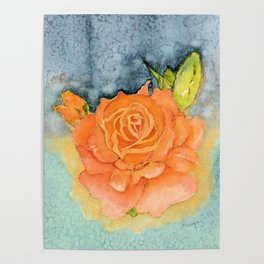 A Peach of A Rose Poster