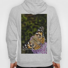Painted Lady Butterfly 0923 Hoody