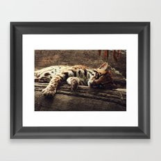 ocelot Framed Art Print