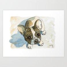 French bulldog puppy 456 Art Print