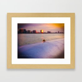 The Lady And The Lake Framed Art Print