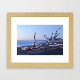 One of the logs Framed Art Print