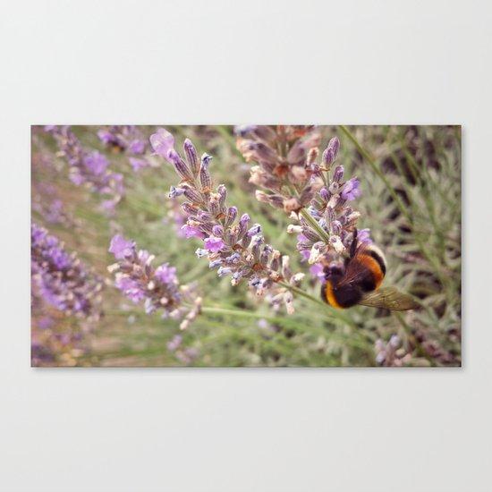 Buzz Around Canvas Print