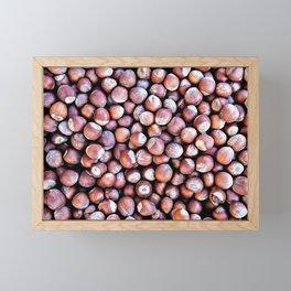 Pattern Of Hazel Or Filbert Nuts Of Brown Color Framed Mini Art Print