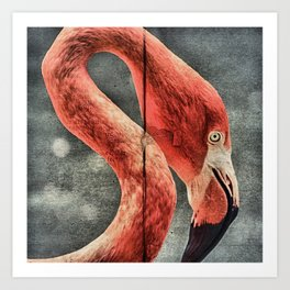 Flamingo in Literature Art Print