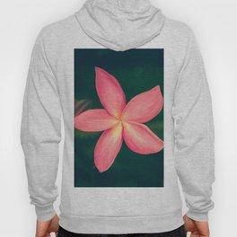 Pink Tropical Flower Hoody