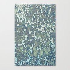 Piece Canvas Print
