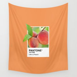 PANTONE SERIES – PEACH Wall Tapestry