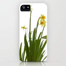 Narcissus flowers iPhone Case