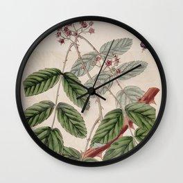 Flower 854 rubus pauciflorus Nepal Raspberry13 Wall Clock