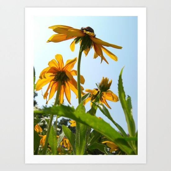 Summer Yellow Art Print