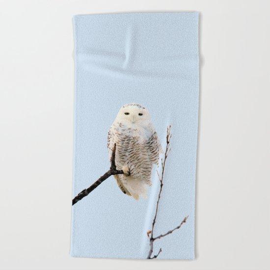 Snowy in the Wind (Snowy Owl) Beach Towel