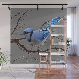 WINTER BLUE JAY IN TREE BRANCHES Wall Mural
