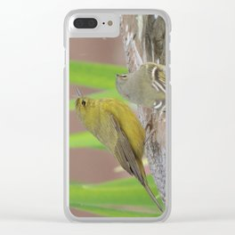 At the Fountain Clear iPhone Case