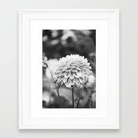 film Framed Art Prints featuring Film by Zoë Hannah Nash