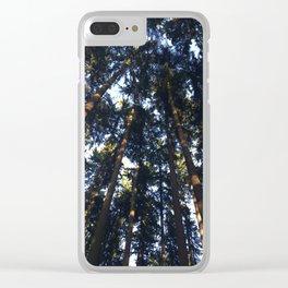 Giant trees in Aurora California Clear iPhone Case