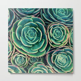 Rosettes in Green Metal Print