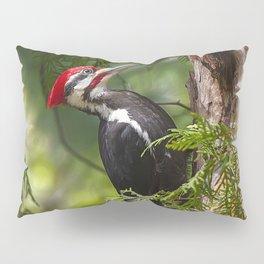Pileated Woodpecker 6340 Pillow Sham