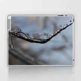Winter Frozen Laptop & iPad Skin