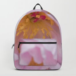 Pink Confection Backpack