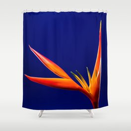 Flower orange blue 7 Shower Curtain