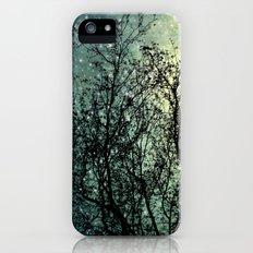 Starry Sky iPhone (5, 5s) Slim Case