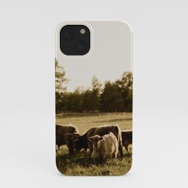 Herd of Highland Cattle iPhone Case