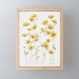 Yellow Cosmos Flowers Framed Mini Art Print