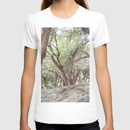 Perspective of Sacsayhuaman trees T-shirt