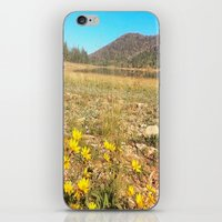 navajo iPhone & iPod Skins featuring Navajo by Nicole Roberts