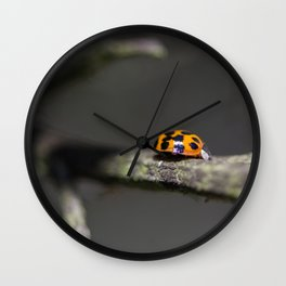Lady Bug Wall Clock