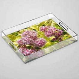 Lilac flowers Acrylic Tray