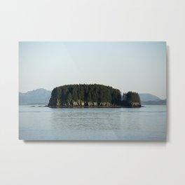 Island of Trees Metal Print