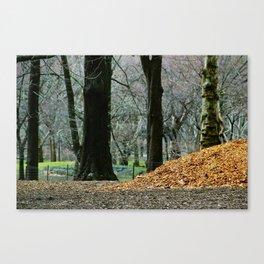 Central Park 80's Canvas Print